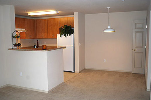 Kitchen and carpeted dinning area